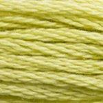 DMC Stranded Cotton 3819