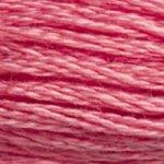 DMC Stranded Cotton 3833