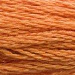 DMC Stranded Cotton 3853