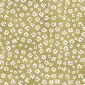 Blume & Grow  –  DV3956